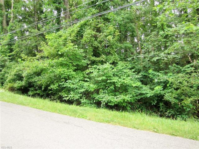 Richelieu Avenue, Sheffield Lake, OH 44054 (MLS #4084208) :: RE/MAX Trends Realty