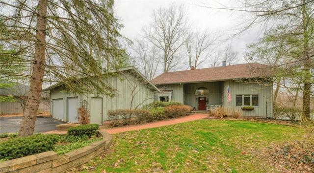 446-23 White Tail Dr, Aurora, OH 44202 (MLS #4084951) :: Ciano-Hendricks Realty Group
