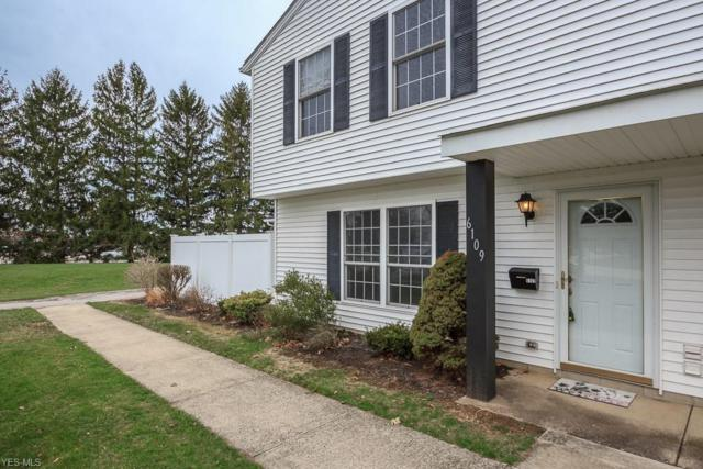 6109 Pineview Dr, Madison, OH 44057 (MLS #4085979) :: Ciano-Hendricks Realty Group