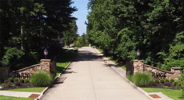 Lochwood Glen #9538, Wooster, OH 44691 (MLS #4088103) :: Keller Williams Chervenic Realty