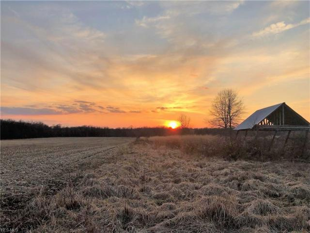 6679 State Route 45, Orwell, OH 44076 (MLS #4088316) :: The Holden Agency