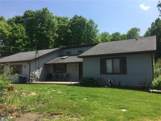 247 W Main St, Seville, OH 44273 (MLS #4089324) :: RE/MAX Valley Real Estate