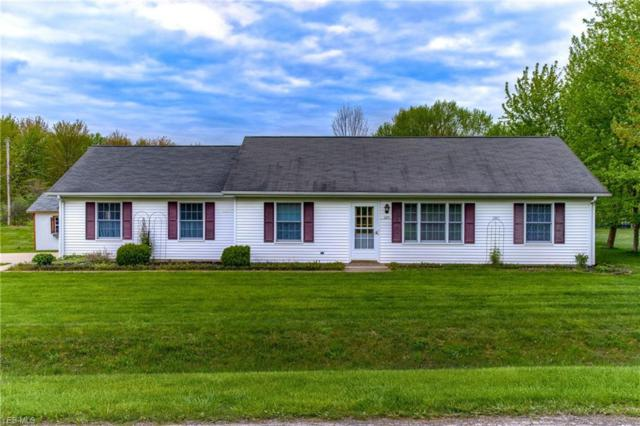 325 Rome Ter, Roaming Shores, OH 44084 (MLS #4091387) :: RE/MAX Valley Real Estate