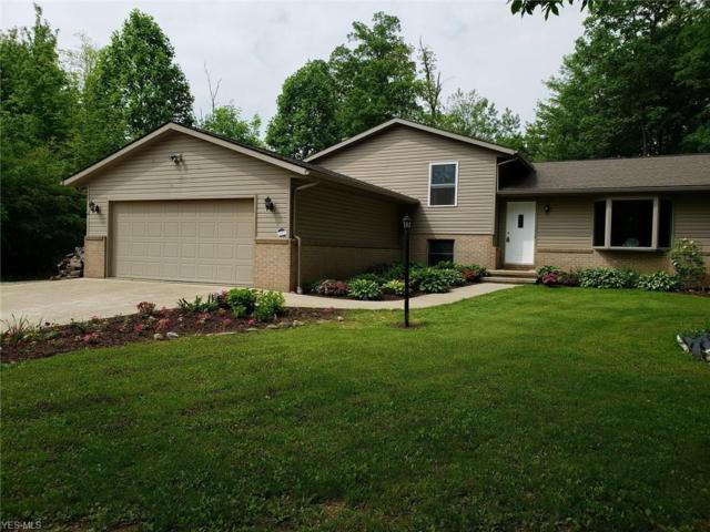 4225 Majorna Drive, West Salem, OH 44287 (MLS #4091568) :: RE/MAX Valley Real Estate