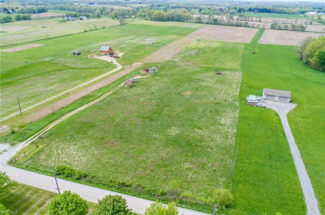 Kemary Ave SW, Navarre, OH 44662 (MLS #4091961) :: RE/MAX Valley Real Estate