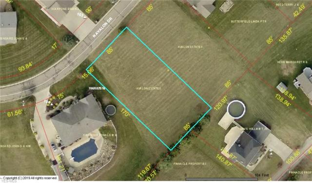 N Lot #6 Avalon, Wintersville, OH 43953 (MLS #4094946) :: The Holly Ritchie Team