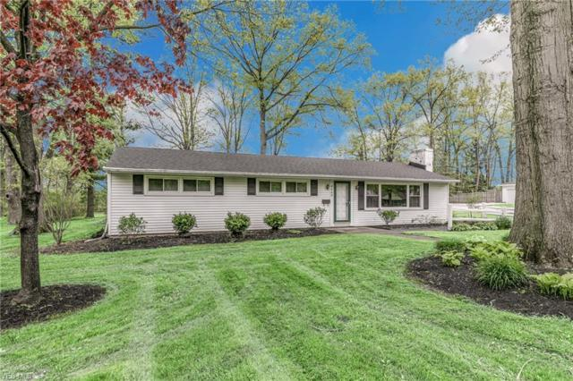 8063 Brentwood Rd, Mentor, OH 44060 (MLS #4096809) :: RE/MAX Trends Realty