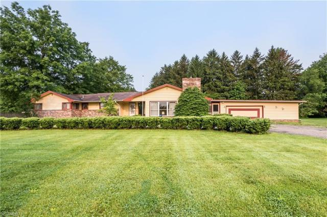 10203 Hewins Road, Garrettsville, OH 44231 (MLS #4097555) :: Tammy Grogan and Associates at Cutler Real Estate