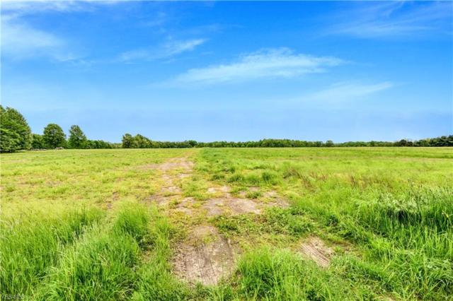 Arrel Road, Lowellville, OH 44436 (MLS #4098437) :: RE/MAX Valley Real Estate