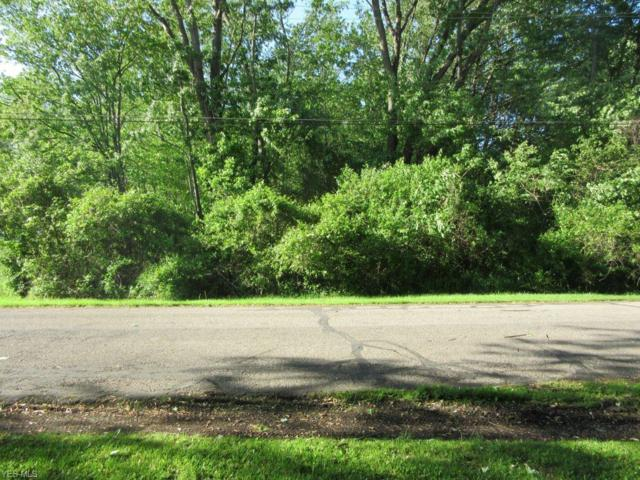 Dorchester Rd, Perry, OH 44081 (MLS #4099504) :: RE/MAX Edge Realty