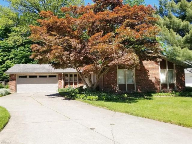 1300 Medfield Drive, Rocky River, OH 44116 (MLS #4102112) :: RE/MAX Edge Realty