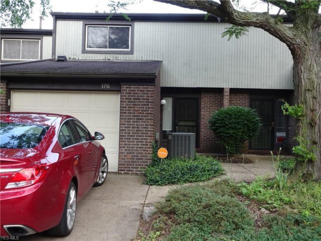 176 Saint Clair Drive, Akron, OH 44307 (MLS #4103359) :: RE/MAX Edge Realty