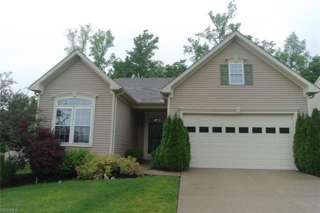 9509 Angela Drive, Twinsburg, OH 44087 (MLS #4106873) :: RE/MAX Pathway