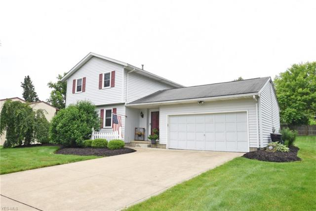 1645 Brunnerdale Avenue NW, Massillon, OH 44646 (MLS #4107457) :: Tammy Grogan and Associates at Cutler Real Estate