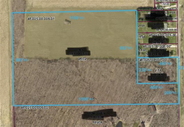 Chapel Road, Ashtabula, OH 44004 (MLS #4109740) :: The Crockett Team, Howard Hanna