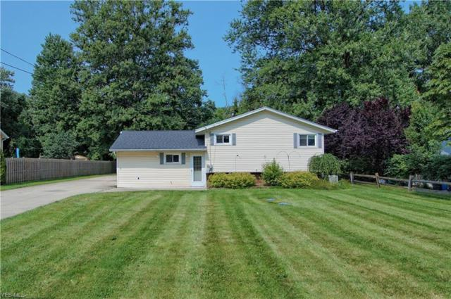 6252 Chestnut Street, Concord, OH 44077 (MLS #4110076) :: RE/MAX Valley Real Estate