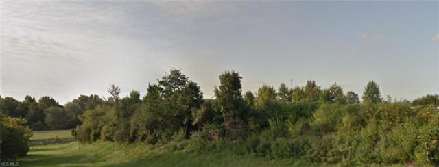 Romestant Street, Norton, OH 44203 (MLS #4110325) :: Keller Williams Chervenic Realty