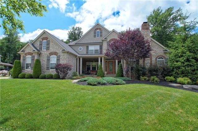 11478 Viceroy Street, Concord, OH 44077 (MLS #4114456) :: RE/MAX Valley Real Estate