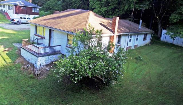 47712 Bell School Road, East Liverpool, OH 43920 (MLS #4117013) :: RE/MAX Trends Realty