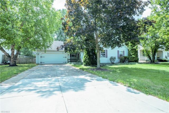 910 Alden Court, Medina, OH 44256 (MLS #4121535) :: RE/MAX Valley Real Estate
