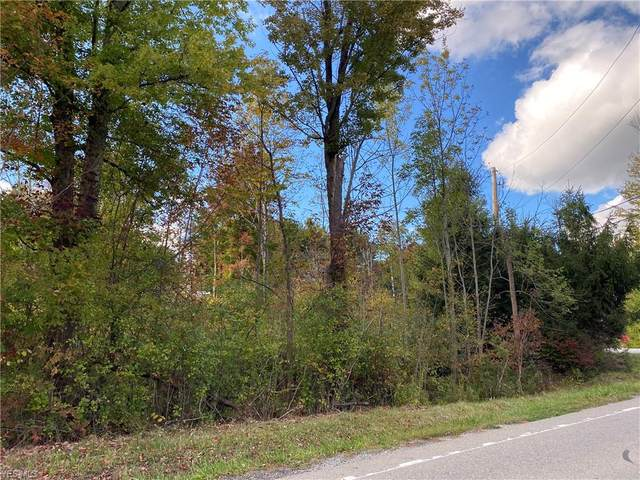 S/L 10 Julie Drive, Chardon, OH 44024 (MLS #4134182) :: Tammy Grogan and Associates at Cutler Real Estate