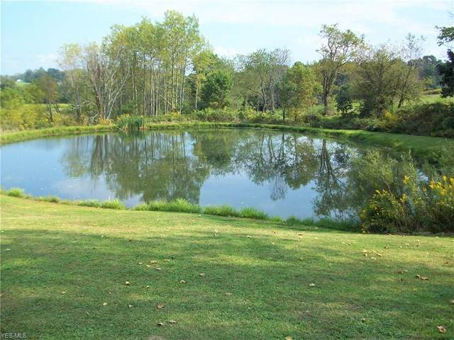 2112 Canyon Road SE, Carrollton, OH 44615 (MLS #4136382) :: RE/MAX Valley Real Estate