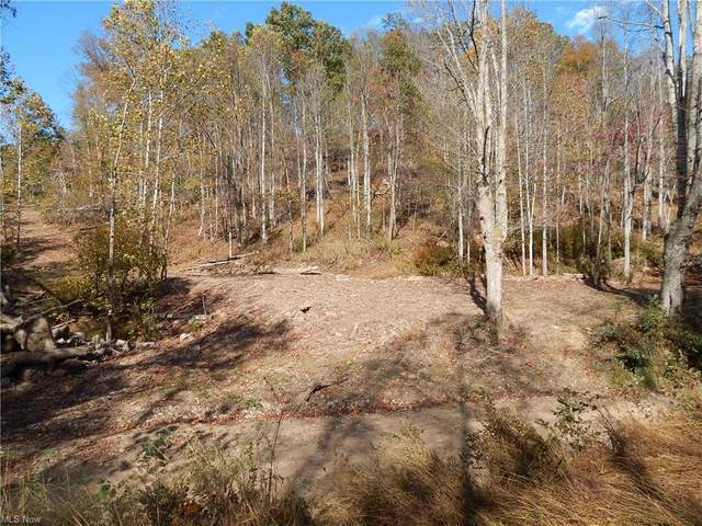 150A Richardsonville Rd., Creston, WV 26141 (MLS #4144832) :: The Jess Nader Team   RE/MAX Pathway