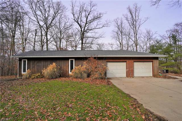 9539 Bear Hollow Road, Deerfield, OH 44411 (MLS #4154002) :: The Holden Agency
