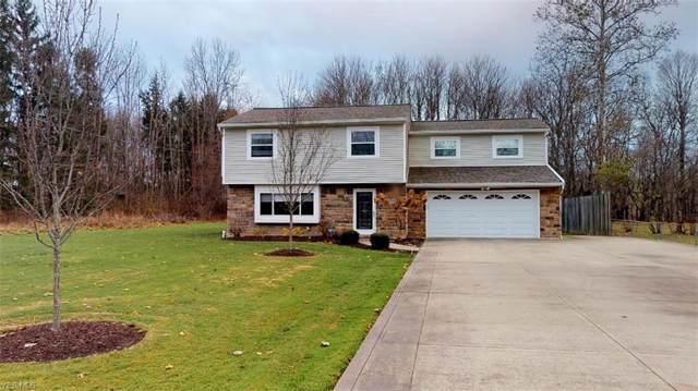 8124 Thorne Avenue, Kirtland, OH 44094 (MLS #4154892) :: The Crockett Team, Howard Hanna