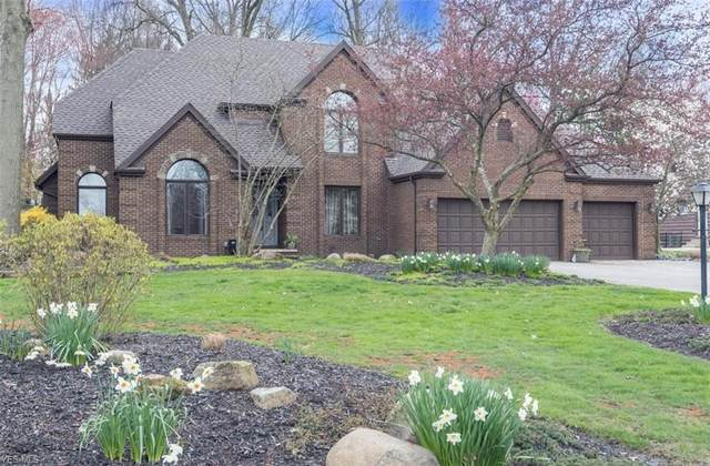 6656 Beechwood Drive, Independence, OH 44131 (MLS #4158976) :: Tammy Grogan and Associates at Cutler Real Estate