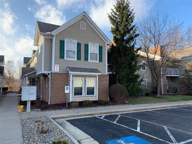 3395 Lennox Village Drive #247, Fairlawn, OH 44333 (MLS #4160574) :: RE/MAX Trends Realty