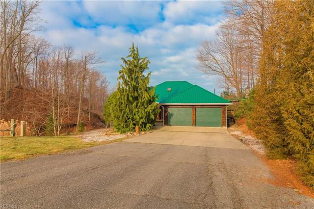 3211 W Lake Road, North Kingsville, OH 44068 (MLS #4160669) :: The Art of Real Estate