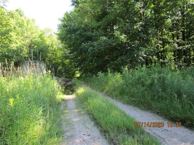 Laskey Road, Rome, OH 44085 (MLS #4162365) :: RE/MAX Valley Real Estate