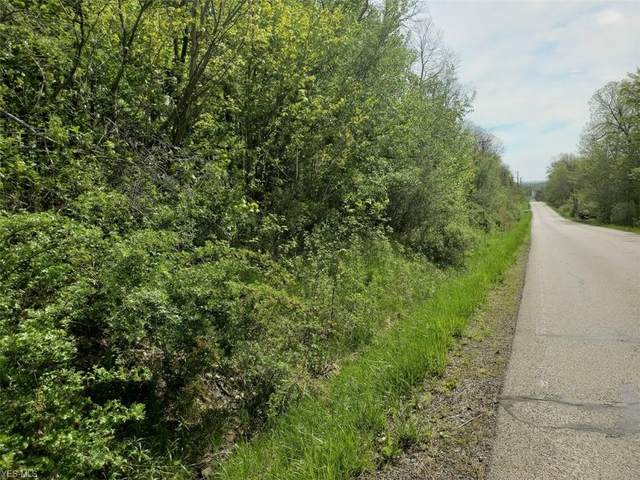 Burrows Road, Thompson, OH 44086 (MLS #4163225) :: RE/MAX Valley Real Estate
