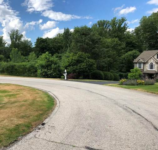 S/L 175 Hearthstone Lane, Chagrin Falls, OH 44023 (MLS #4164068) :: The Holden Agency