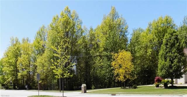 Hilliard Boulevard, Westlake, OH 44145 (MLS #4164987) :: RE/MAX Trends Realty