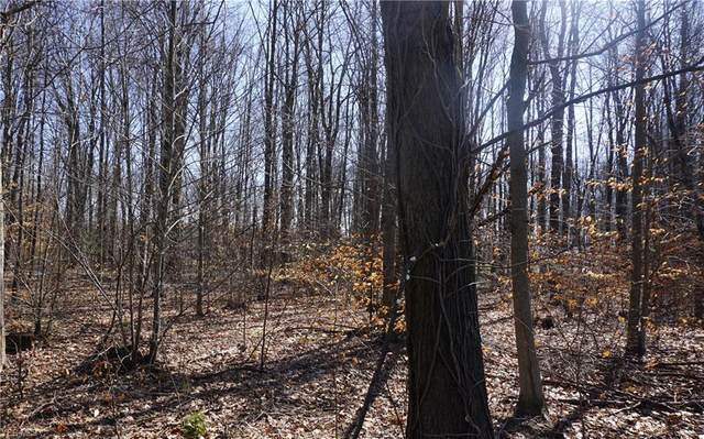 Lot 39 Griffith Road, Ravenna, OH 44266 (MLS #4168977) :: The Art of Real Estate