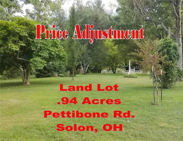 Pettibone Road, Solon, OH 44139 (MLS #4170962) :: RE/MAX Trends Realty