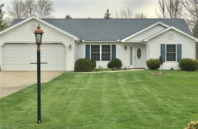 99 Rockaway Drive, Roaming Shores, OH 44085 (MLS #4172111) :: The Holly Ritchie Team
