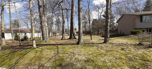V/L Duneden Avenue, Solon, OH 44139 (MLS #4174793) :: The Art of Real Estate