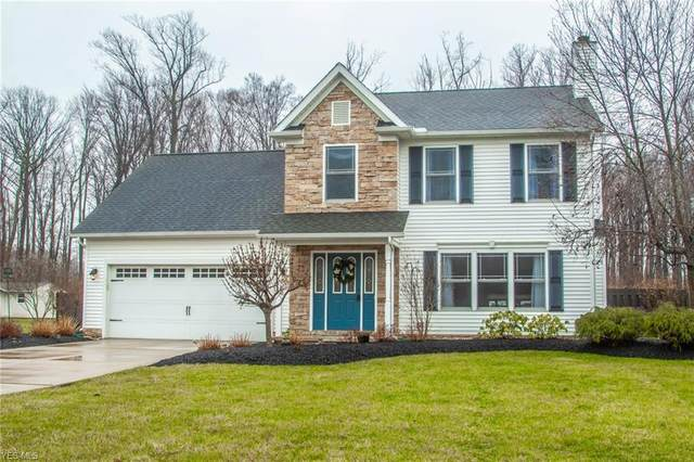 6864 Dave Drive, Madison, OH 44057 (MLS #4177605) :: RE/MAX Trends Realty