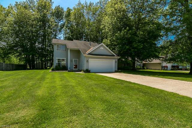 1040 Valewood Court, Painesville Township, OH 44077 (MLS #4177794) :: The Holden Agency