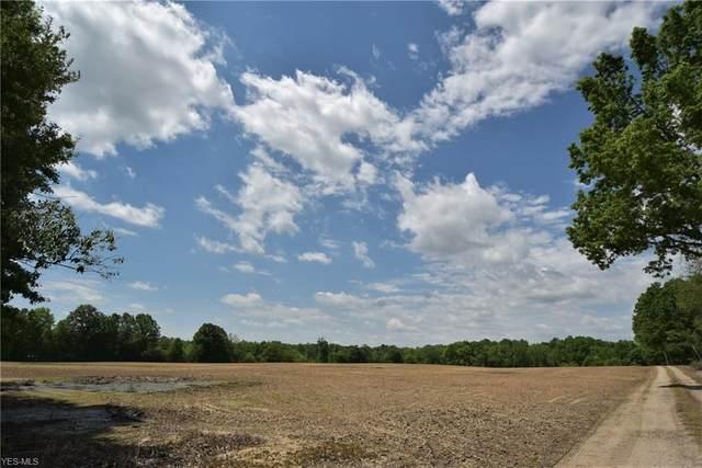 1760 N Newton Falls Road, North Jackson, OH 44451 (MLS #4181634) :: The Crockett Team, Howard Hanna