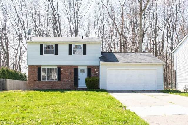 6906 Sutherland Court, Mentor, OH 44060 (MLS #4182229) :: RE/MAX Valley Real Estate