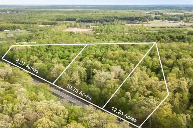 Lot 3 Main Market Road, Garrettsville, OH 44231 (MLS #4182823) :: The Art of Real Estate