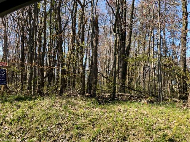 10541 Girdled Road B4, Concord, OH 44077 (MLS #4185395) :: RE/MAX Valley Real Estate