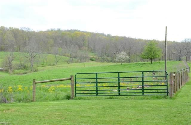 0 Soggy Run Road, Senecaville, OH 43780 (MLS #4186921) :: Tammy Grogan and Associates at Cutler Real Estate