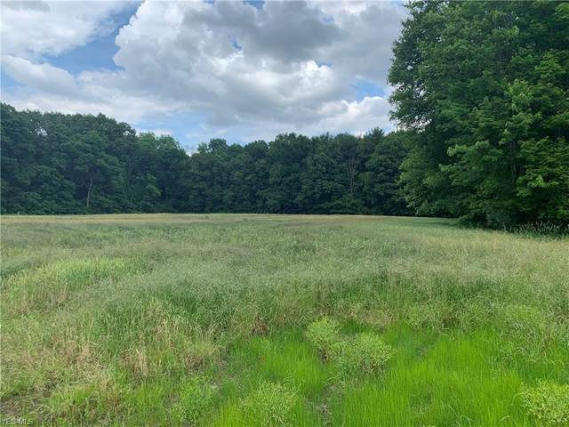 28 acres Strausser Street NW, North Canton, OH 44720 (MLS #4187447) :: The Holly Ritchie Team
