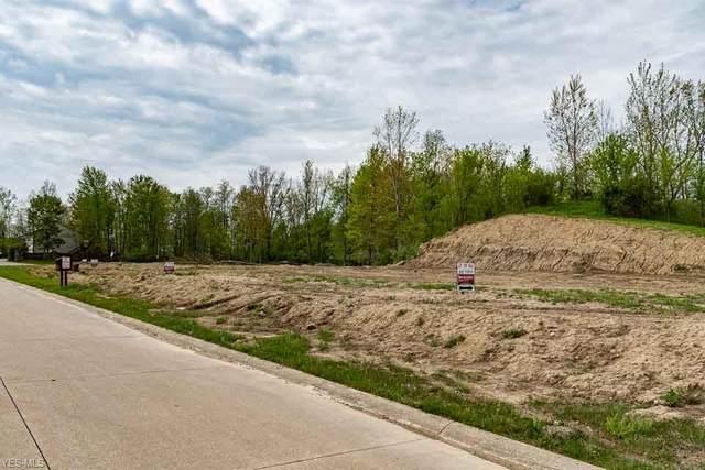 285 Eastlake Drive, Lagrange, OH 44050 (MLS #4188542) :: RE/MAX Trends Realty