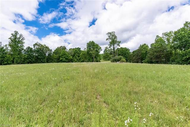 Vincent Hill Road 283 Acres, Cairo, WV 26337 (MLS #4192368) :: The Holden Agency